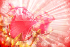 Delicate rose with blurred lights Stock Images