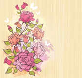 Delicate roses Stock Photos