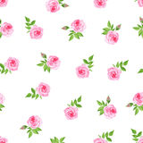 Delicate roses watercolor seamless vector print Stock Image