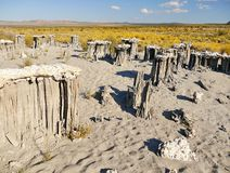 The delicate sand tufas on Navy Beach at Mono Lake, California Royalty Free Stock Photography