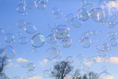 Delicate soap bubbles Stock Image
