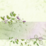 Delicate spring background Stock Image