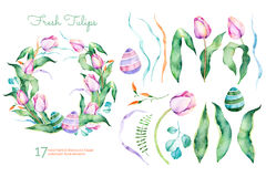 Delicate spring floral collection with tulips,leaves,branches,easter eggs Royalty Free Stock Photo