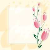 Delicate Tulip Background. Eps10 tulip background frame for greeting card Stock Image