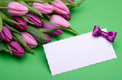 Delicate tulips and greeting card on green Royalty Free Stock Images