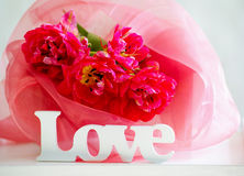 Delicate tulips and love signage Royalty Free Stock Photos