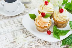 Delicate vanilla cupcakes with cream and raspberries on a white wooden background.  Royalty Free Stock Photos