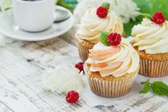 Delicate vanilla cupcakes with cream and raspberries on a white wooden background.  Royalty Free Stock Photography