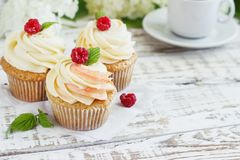 Delicate vanilla cupcakes with cream and raspberries on a white wooden background.  Royalty Free Stock Image