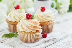 Delicate vanilla cupcakes with cream and raspberries on a white wooden background.  Royalty Free Stock Photo