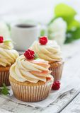 Delicate vanilla cupcakes with cream and raspberries on a white wooden background.  Stock Photos