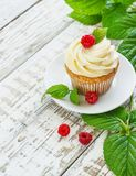 Delicate vanilla cupcakes with cream and raspberries on a white wooden background.  Stock Photo