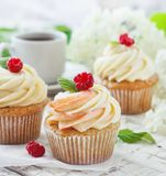 Delicate vanilla cupcakes with cream and raspberries on a white wooden background.  Royalty Free Stock Images