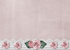 Delicate vintage background with a border of silk roses Royalty Free Stock Image