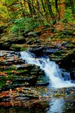 Waterfalls and Fall Leaves Royalty Free Stock Image