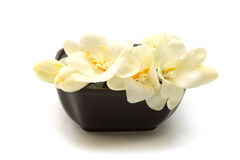 Delicate white flowers. In a low black asian vase Royalty Free Stock Photography