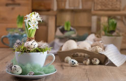 Delicate white hyacinth on vintage kitchen. Happy Easter! Royalty Free Stock Photos