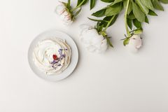 Delicate white peonies and cake on a white background stock photos