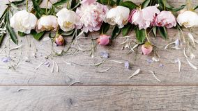 Delicate white pink peony with petals flowers and white ribbon on wooden board. Overhead top view, flat lay. Copy space. Birthday,. Mother& x27;s, Valentines stock photos
