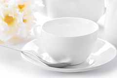 Delicate white tea cup and saucer close-up Stock Photos