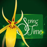 Delicate Yellow Orchid in a Green Background with Glows for Springtime, Vector Illustration Stock Image