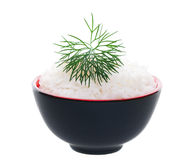 Delicately Garnished Rice Bowl Royalty Free Stock Photo