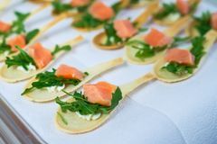 Delicates,填装用红色鱼和绿色的开胃菜 承办酒席服务 免版税库存照片