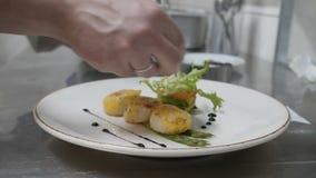 Delicates, prato com cubetas do mar e salada, cozinheiro chefe termina cozinhar o prato decora o prato com molho, restaurante video estoque