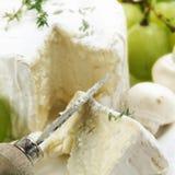 Delicatessen cheese Stock Photography