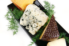 Delicatessen cheese on plate Stock Photography