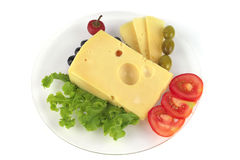 Delicatessen cheese served on dish Stock Images