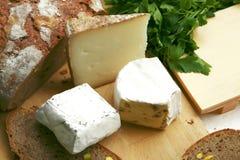 Delicatessen cheese on wood Royalty Free Stock Photo