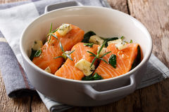 Delicatessen food: salmon baked with spinach, rosemary and roque Royalty Free Stock Photography