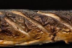 Delicatessen grill mackerel fish in foam Stock Photos