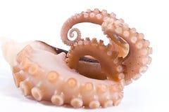 Delicatessen octopus seafood stock photo
