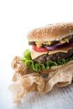 Delicious american burger Stock Photos