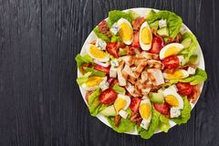 Delicious american cobb salad on plate. Delicious american cobb salad of hard boiled egg, blue mold cheese, crispy fried bacon, romaine lettuce, grilled chicken stock photos