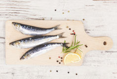 Delicious anchovies fish eating. Delicious anchovies fish with peppercorns and fresh herbs on wooden chopping board on white wooden background, top view Royalty Free Stock Photography
