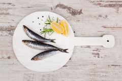 Delicious anchovy fish. Royalty Free Stock Photos