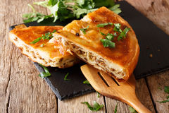 Delicious appetizer: Balkan burek with minced meat close-up. hor Royalty Free Stock Image