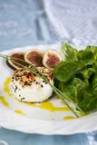 Delicious appetizer of goats milk cheese and figs Stock Images