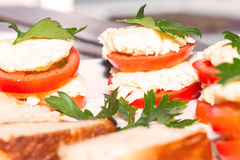 Delicious appetizer, stuffed tomatoes with cream cheese Stock Photography