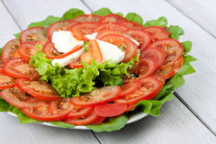 Delicious appetizer. A tomato with lettuce and mozerella Stock Photos