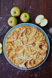 Delicious Apple pie with powdered sugar and fruits Royalty Free Stock Photography