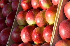 Delicious apples. Beautiful apples in the market place Royalty Free Stock Photos