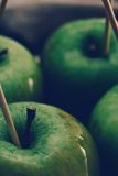 Delicious apples Stock Images