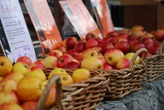 Delicious Apples for Sale at a Market in Australia stock photo