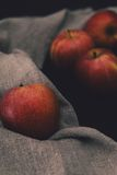 Delicious apples Stock Photography