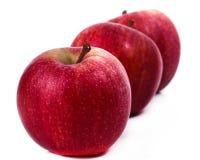 Delicious apples Stock Photos