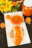 Delicious apricot jam on a slice of bread with butter royalty free stock photography
